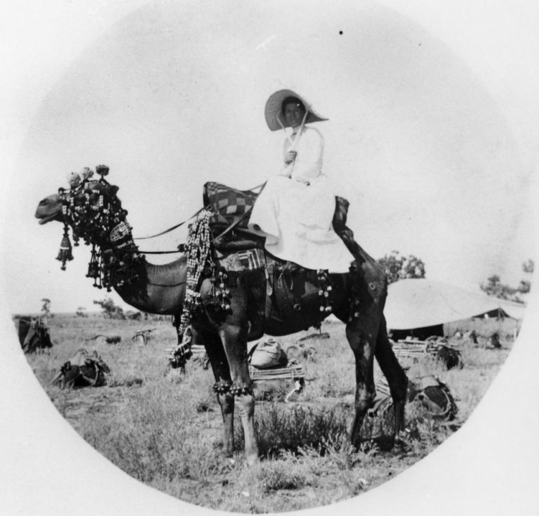 Woman seated side saddle on a highly decorated camel.